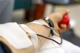 Potestà di Cura e Rispetto della dignità e libertà di cura dell'uomo: alcune riflessioni in tema di rifiuto della terapia trasfusionale