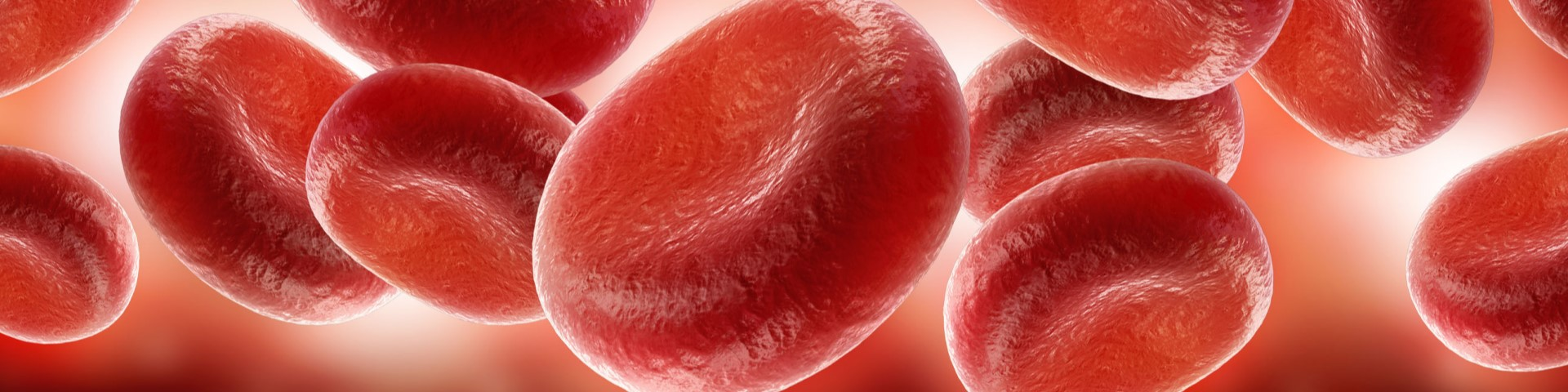 Immunoematologia e trapianto allogenico di cellule staminali emopoietiche