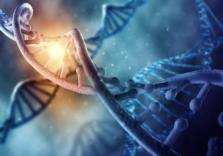 Percorso di convalida di una metodica di biologia molecolare: genotipizzazione <em>RDH</em> fetale da plasma materno