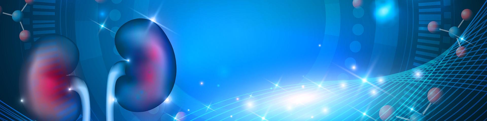 Trapianto di rene ABO incompatibile: aspetti generali e ruolo del servizio trasfusionale